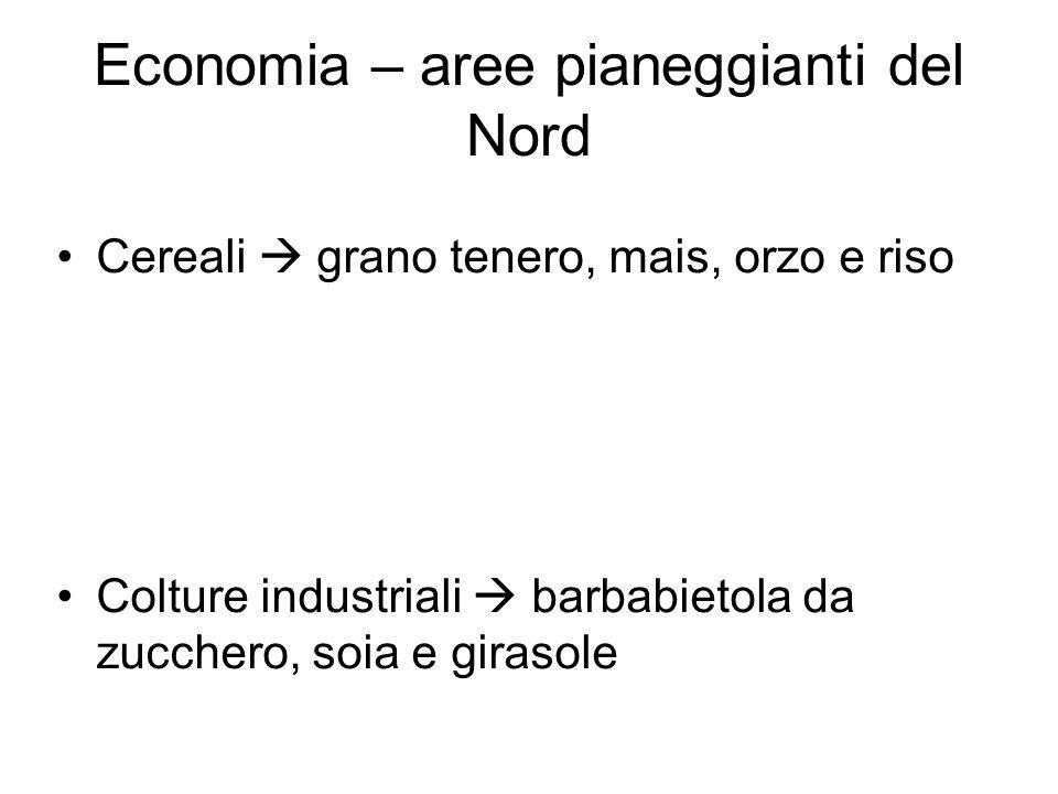 Economia – aree pianeggianti del Nord