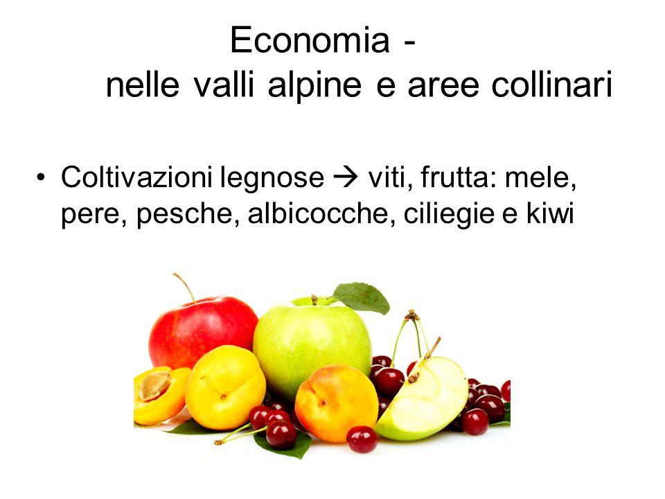 Economia - nelle valli alpine e aree collinari