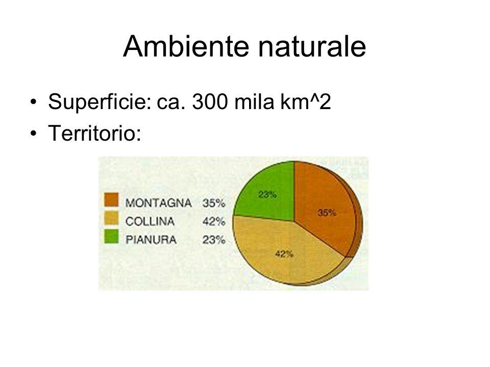 Ambiente naturale Superficie: ca. 300 mila km^2 Territorio: