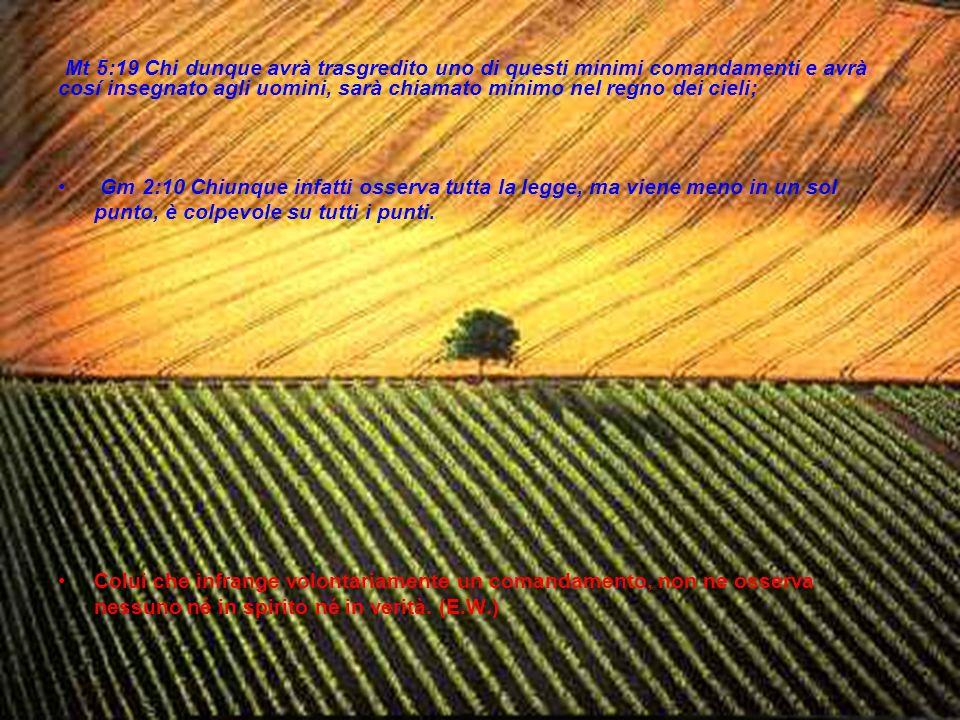 Mt 5:19 Chi dunque avrà trasgredito uno di questi minimi comandamenti e avrà cosí insegnato agli uomini, sarà chiamato minimo nel regno dei cieli;