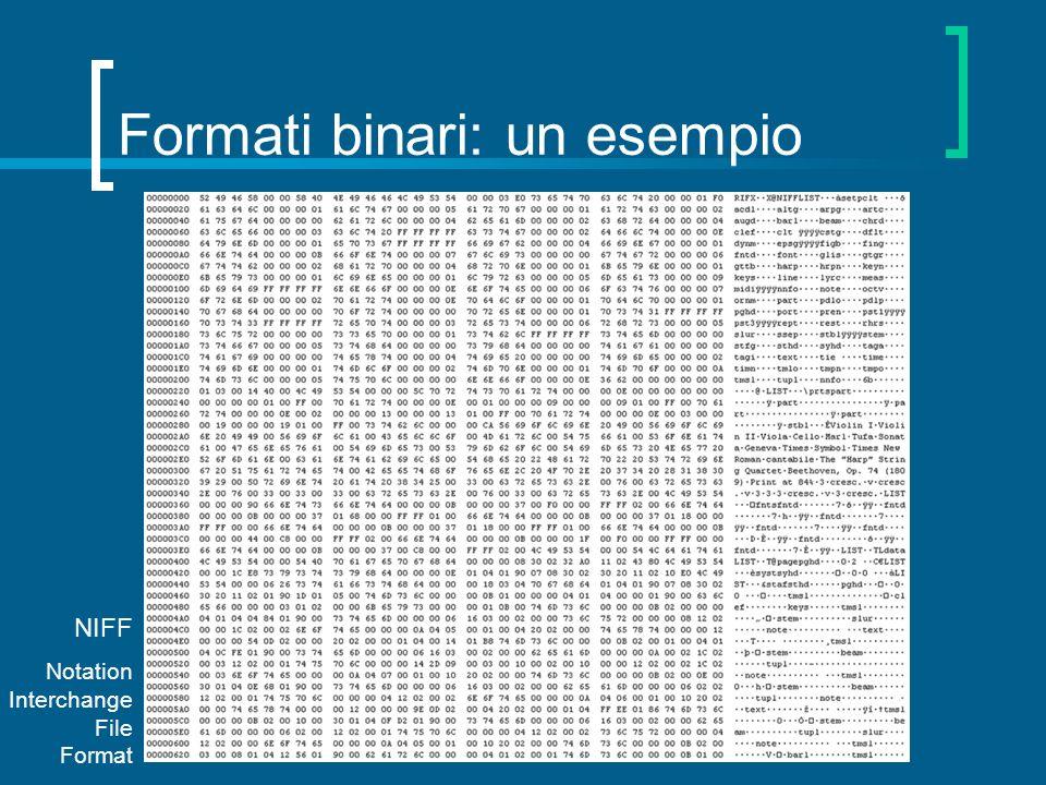 Formati binari: un esempio
