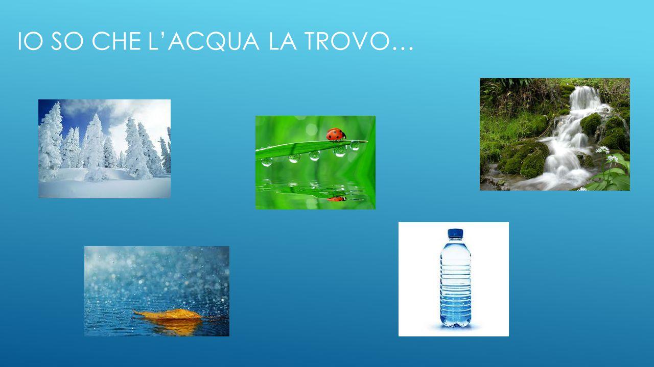 Io so che l'acqua la trovo…