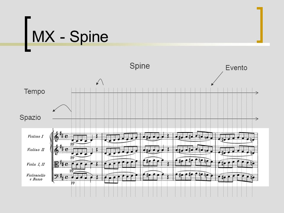 MX - Spine Tempo Spazio Spine Evento