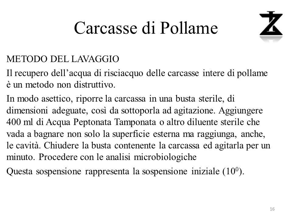 Carcasse di Pollame