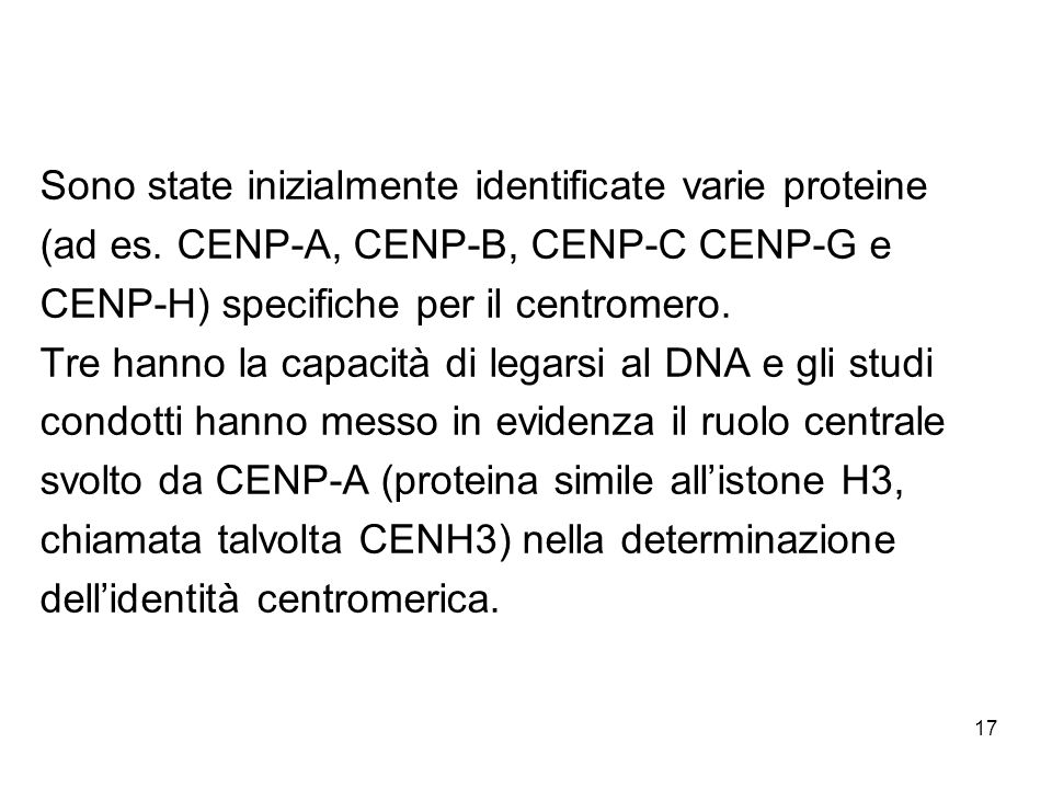 Sono state inizialmente identificate varie proteine (ad es