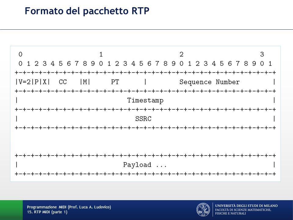 Formato del pacchetto RTP