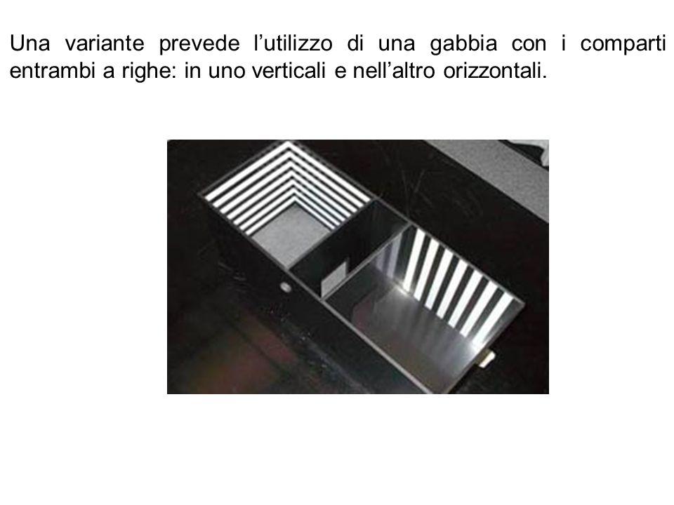 Una variante prevede l'utilizzo di una gabbia con i comparti entrambi a righe: in uno verticali e nell'altro orizzontali.