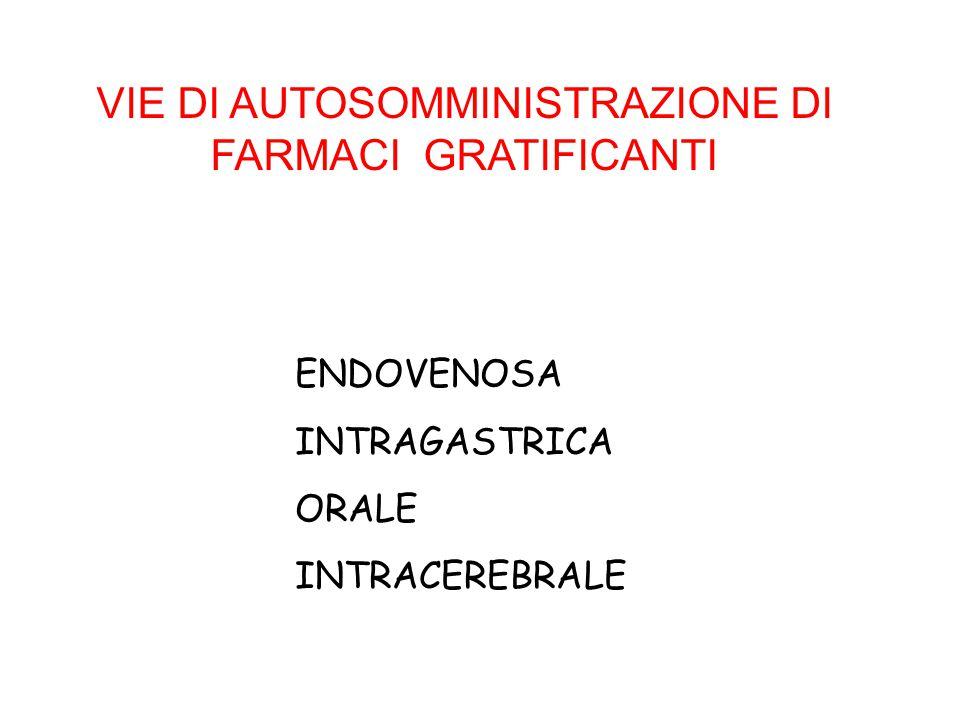 VIE DI AUTOSOMMINISTRAZIONE DI FARMACI GRATIFICANTI
