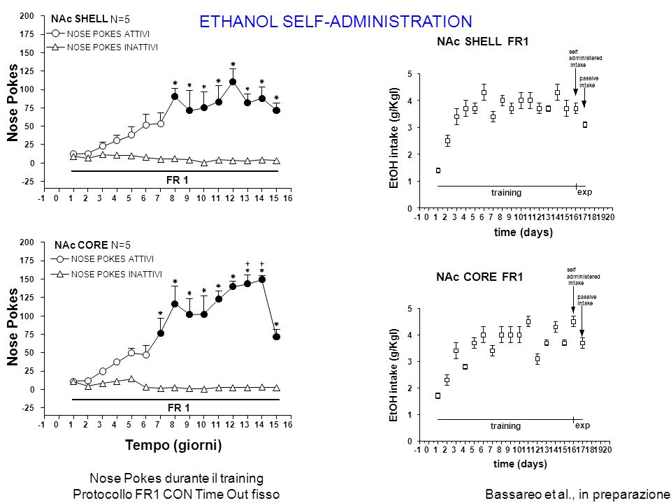 ETHANOL SELF-ADMINISTRATION