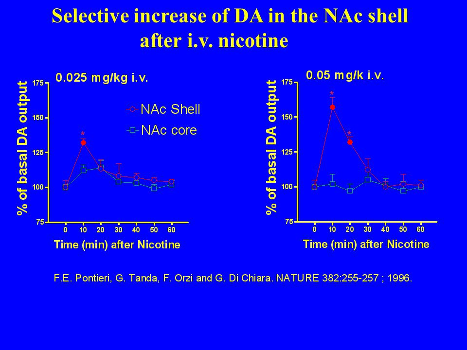 Selective increase of DA in the NAc shell