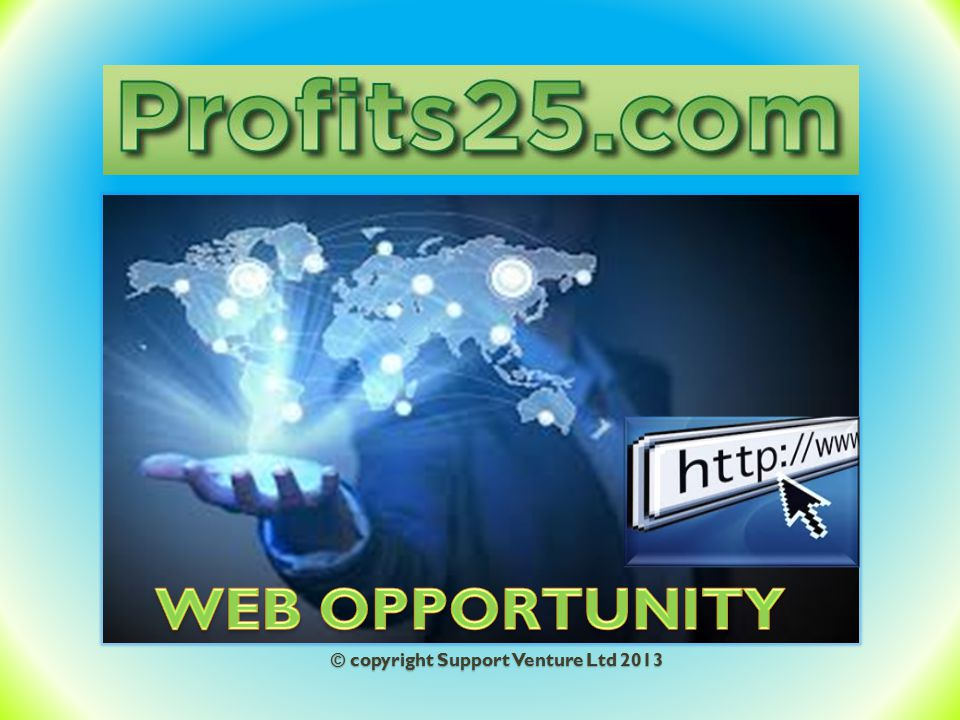 WEB OPPORTUNITY © copyright Support Venture Ltd 2013