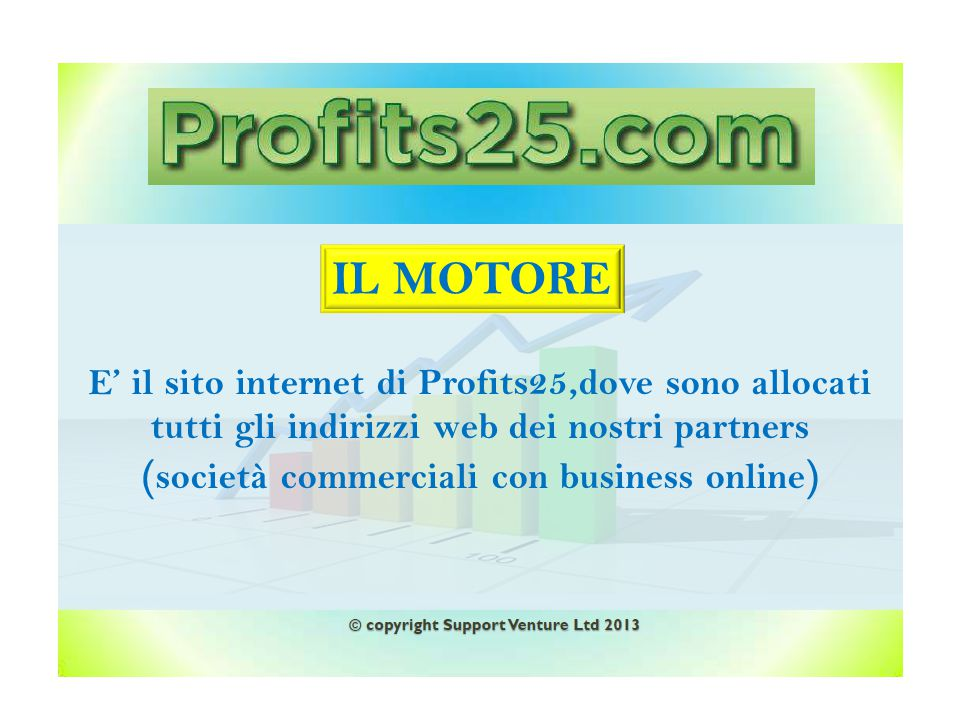 (società commerciali con business online)