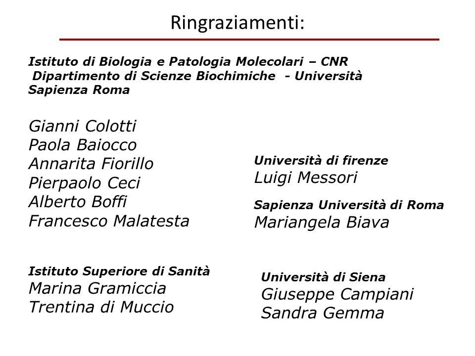 Ringraziamenti: Gianni Colotti Paola Baiocco Annarita Fiorillo