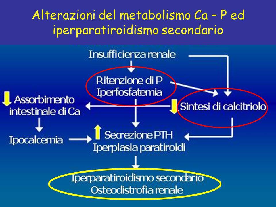 Alterazioni del metabolismo Ca – P ed iperparatiroidismo secondario
