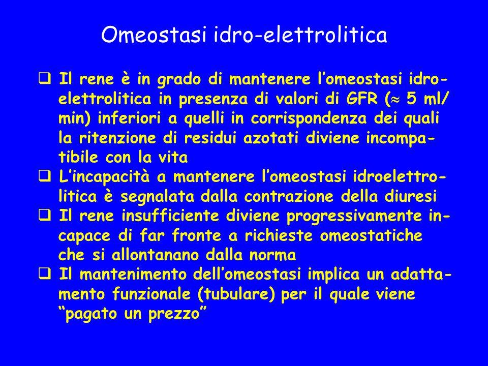 Omeostasi idro-elettrolitica