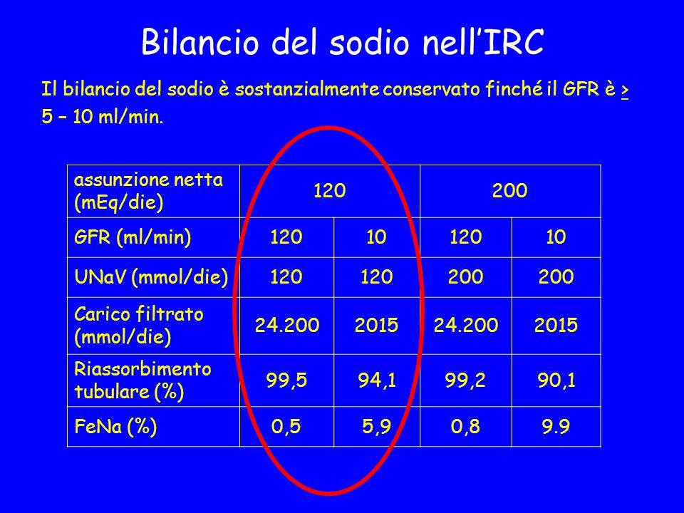 Bilancio del sodio nell'IRC
