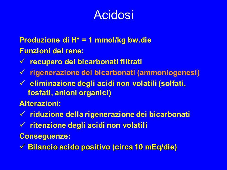 Acidosi Produzione di H+ = 1 mmol/kg bw.die Funzioni del rene: