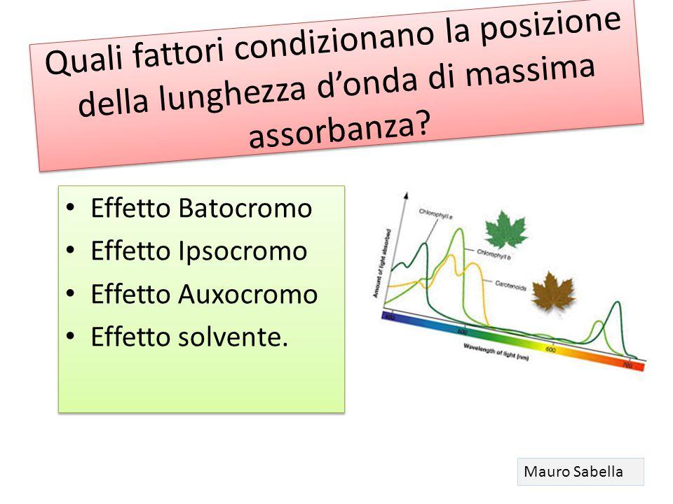 Quali fattori condizionano la posizione della lunghezza d'onda di massima assorbanza