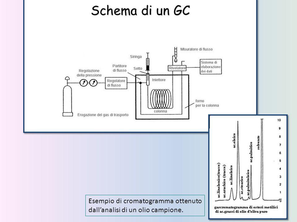 Esempio di cromatogramma ottenuto dall'analisi di un olio campione.