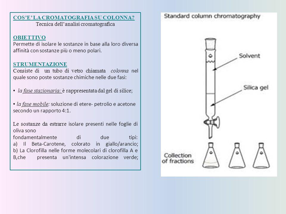 Tecnica dell'analisi cromatografica