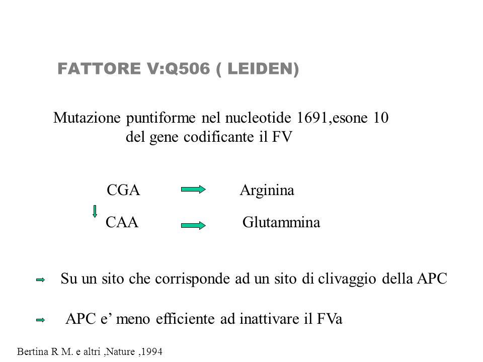 Mutazione puntiforme nel nucleotide 1691,esone 10