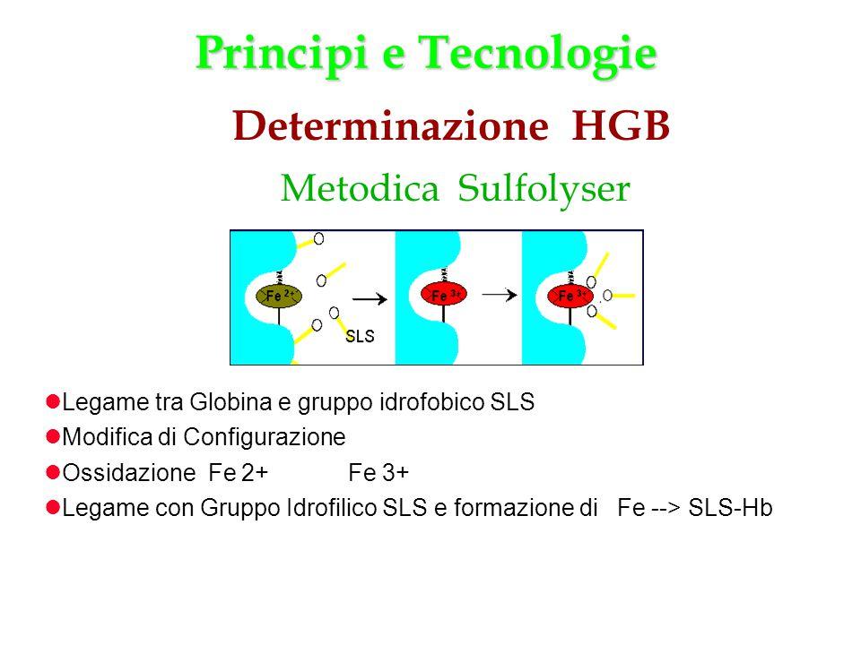 Principi e Tecnologie Determinazione HGB Metodica Sulfolyser