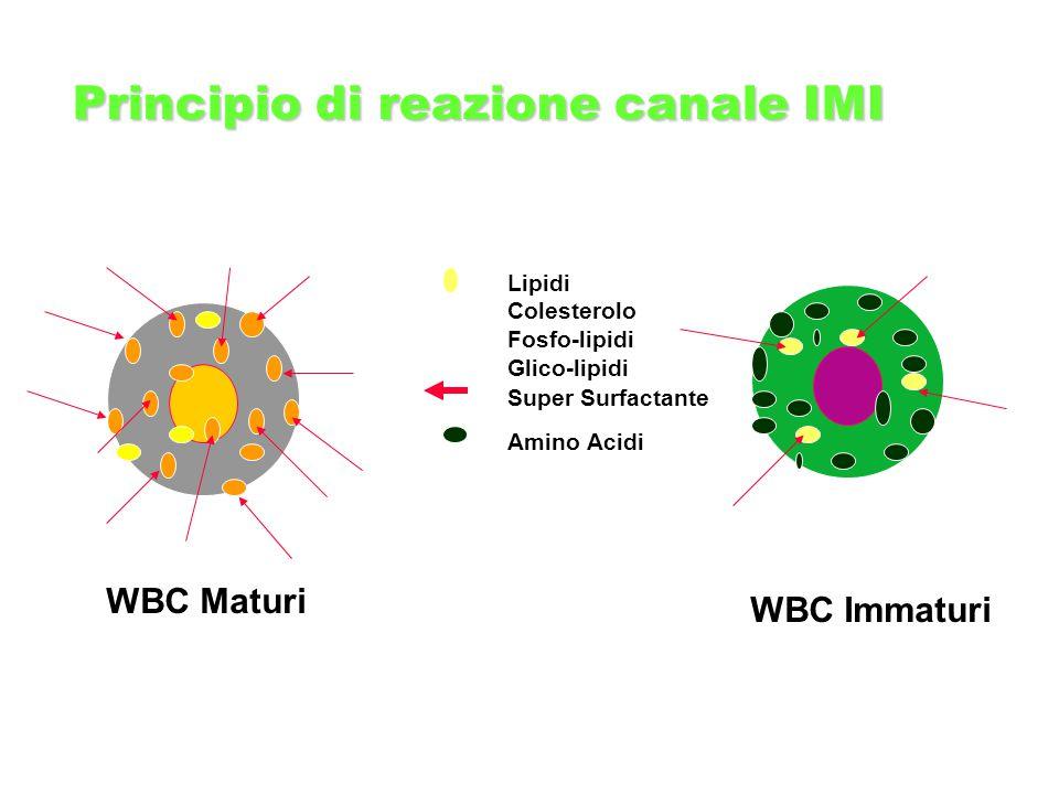 Principio di reazione canale IMI