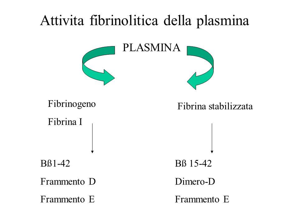 Attivita fibrinolitica della plasmina