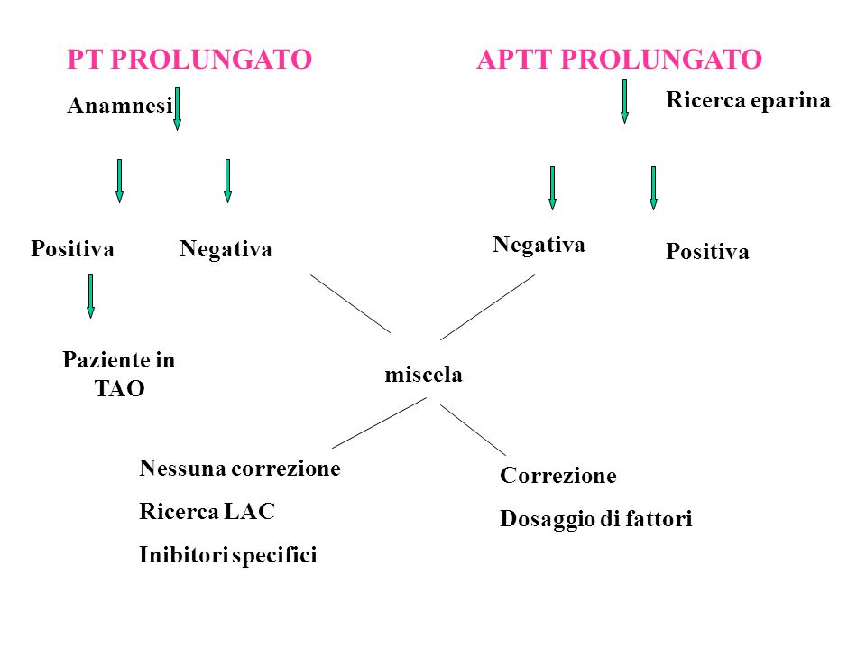 PT PROLUNGATO APTT PROLUNGATO Anamnesi Ricerca eparina