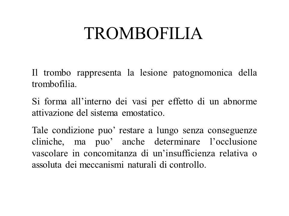 TROMBOFILIA Il trombo rappresenta la lesione patognomonica della trombofilia.