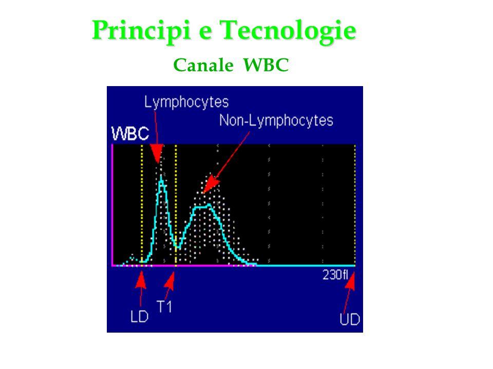 Principi e Tecnologie Canale WBC