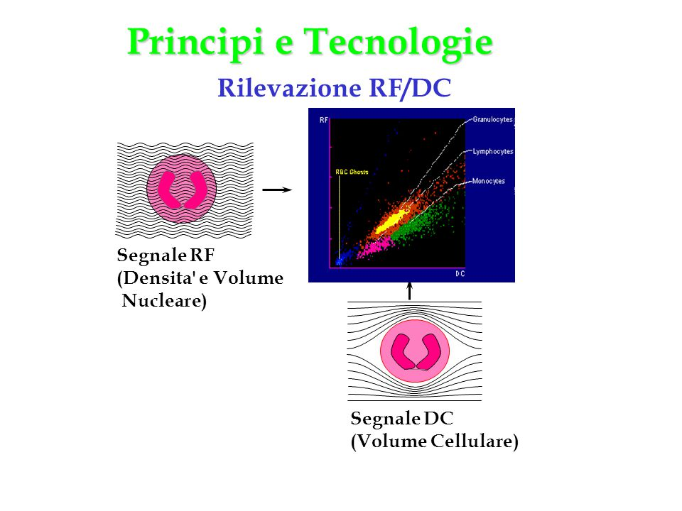 Principi e Tecnologie Rilevazione RF/DC Segnale RF (Densita e Volume
