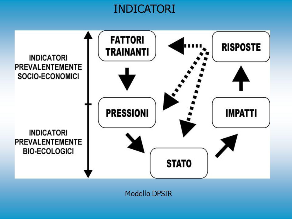 INDICATORI Modello DPSIR