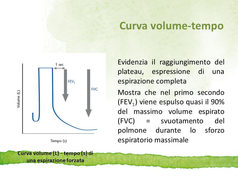 Curva volume (L) - tempo (s) di una espirazione forzata
