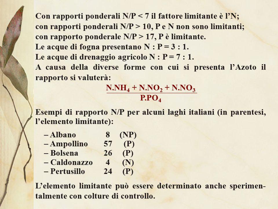 Con rapporti ponderali N/P < 7 il fattore limitante è l'N;