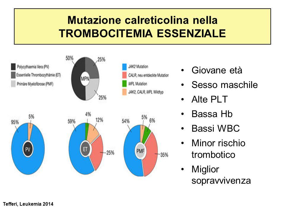 Mutazione calreticolina nella TROMBOCITEMIA ESSENZIALE