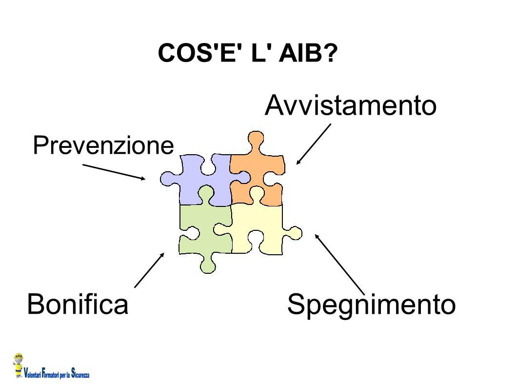 COS E L AIB Avvistamento Prevenzione Bonifica Spegnimento 12 12