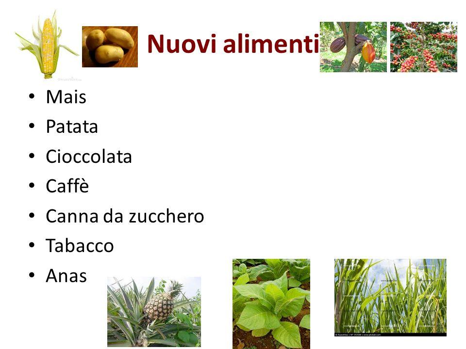 Nuovi alimenti Mais Patata Cioccolata Caffè Canna da zucchero Tabacco