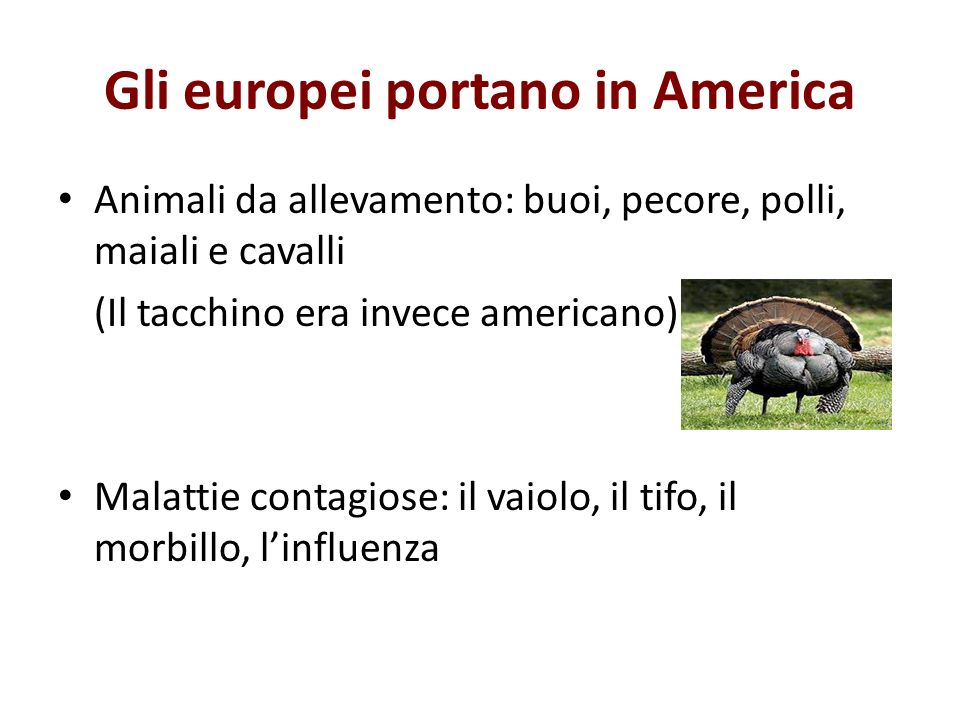 Gli europei portano in America