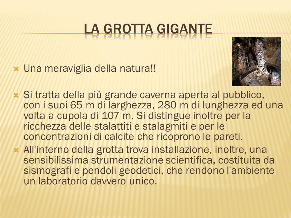 La grotta gigante Una meraviglia della natura!!