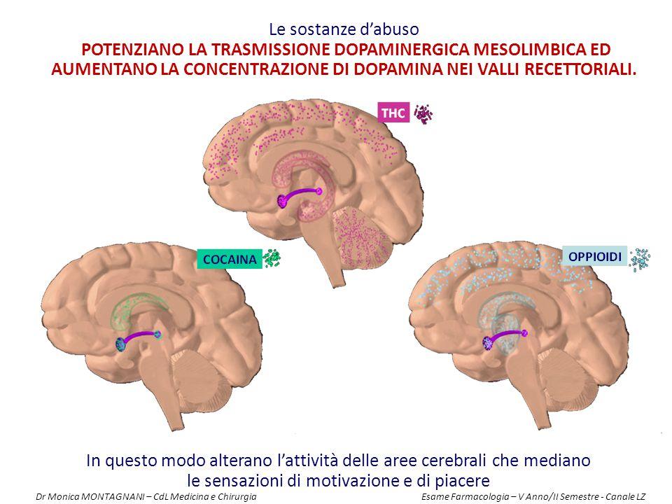 In questo modo alterano l'attività delle aree cerebrali che mediano