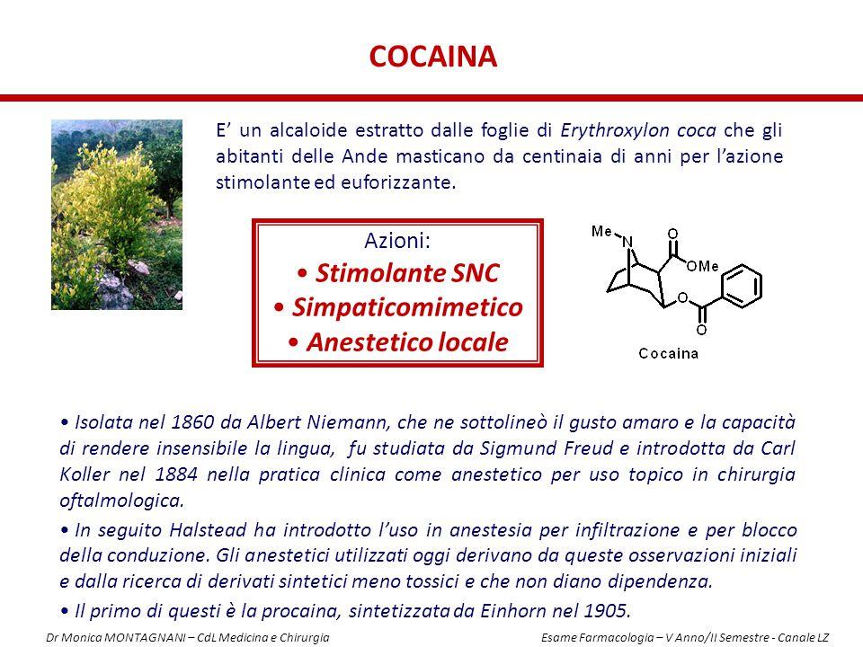 cocaina Stimolante SNC Simpaticomimetico Anestetico locale Azioni:
