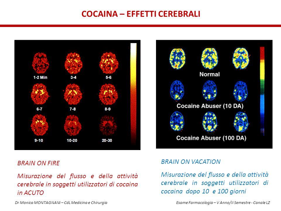 Cocaina – EFFETTI CEREBRALI