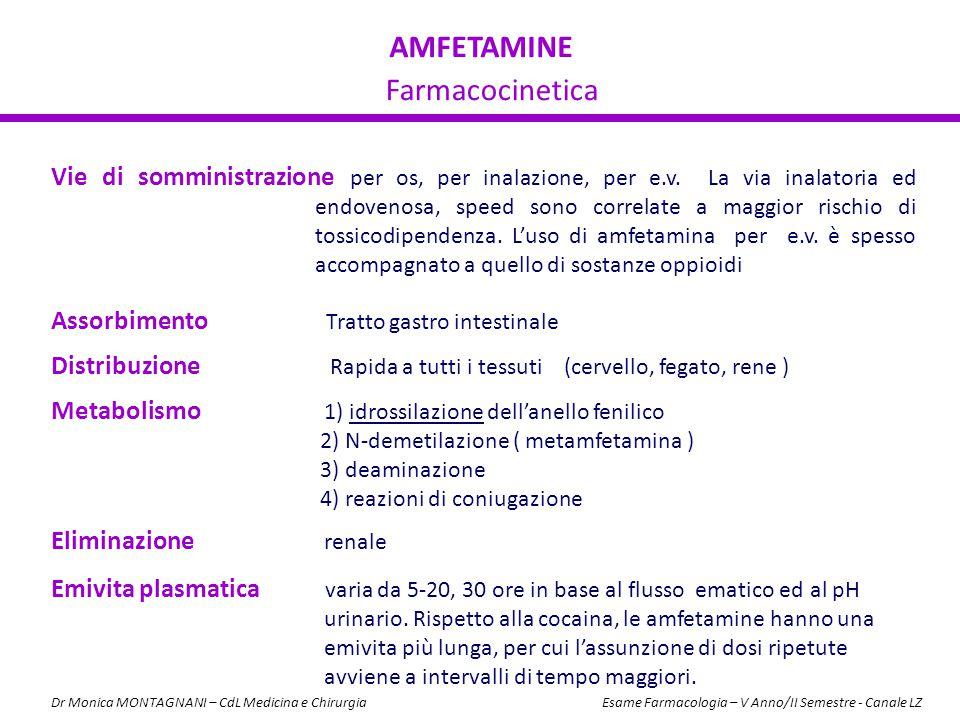 AMFETAMINE Farmacocinetica