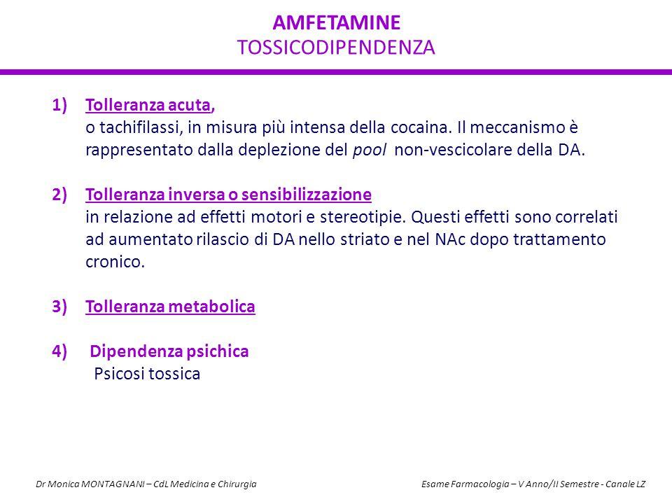 AMFETAMINE TOSSICODIPENDENZA Tolleranza acuta,