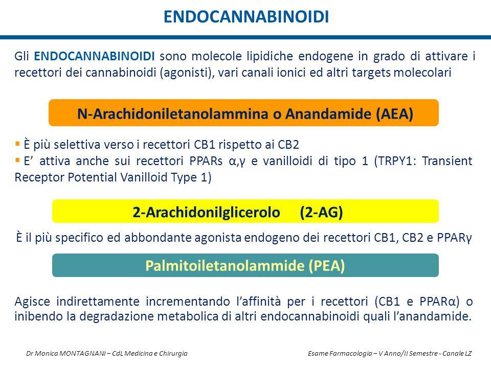 ENDOCANNABINOIDI N-Arachidoniletanolammina o Anandamide (AEA)