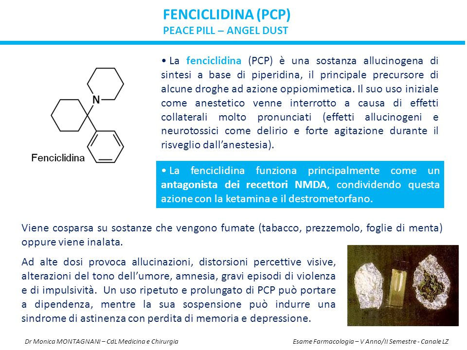 FENCICLIDINA (PCP) PEACE PILL – ANGEL DUST