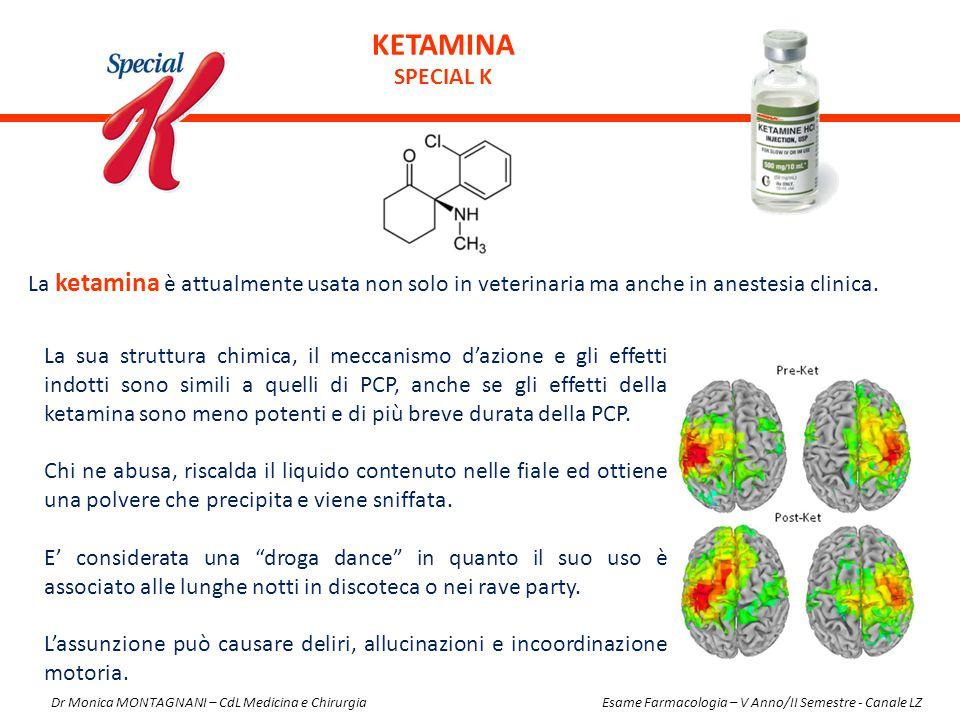 KETAMINA special K. La ketamina è attualmente usata non solo in veterinaria ma anche in anestesia clinica.