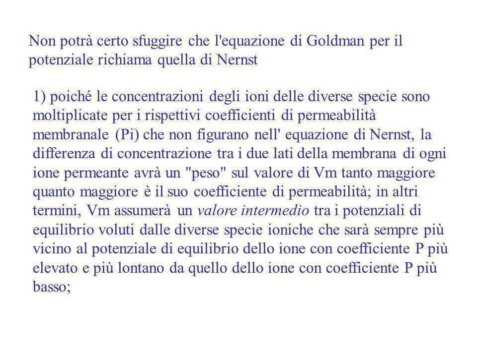 Non potrà certo sfuggire che l equazione di Goldman per il potenziale richiama quella di Nernst