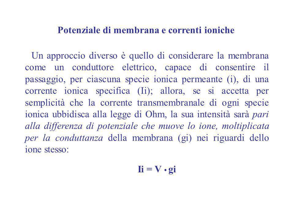 Potenziale di membrana e correnti ioniche